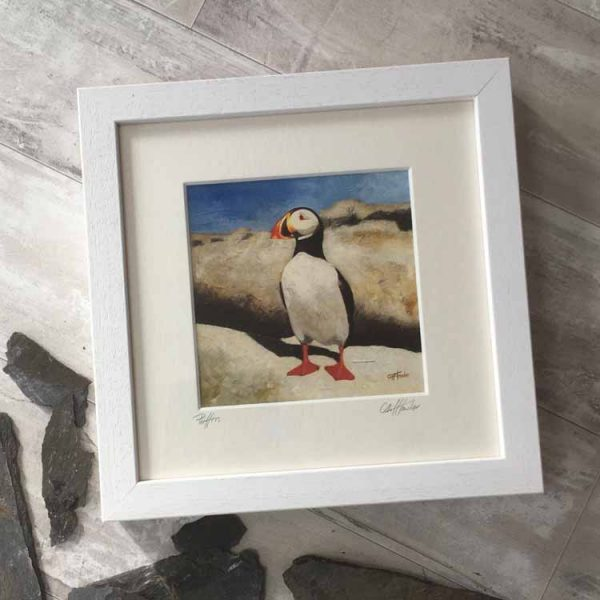Cliff Towler puffin
