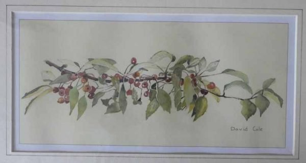 Crab Apples is a Giclee print by artist David Cole.