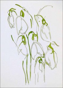 Miraculous Snowdrops is a framed original painting by Wimborne artist Wendy Jump.