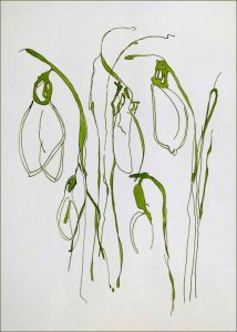 Magical Snowdrops is a framed original painting by Wimborne artist Wendy Jump.