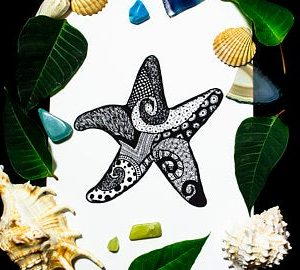 Starfish by Skulls and Lilies