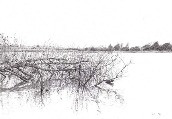 An Old Memory is a graphite pencil on paper artwork by Dorset artist Ian Hedley