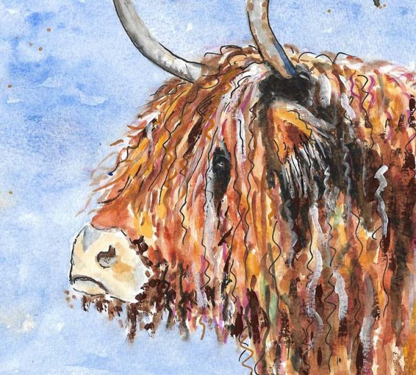 Detail of Highland Cow