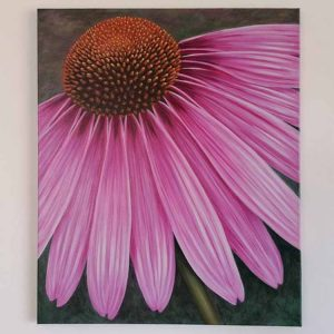 Echinacea is a larger than life painting of a flower by Linda Courtney.