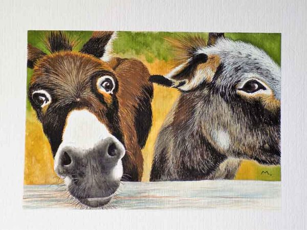 Hello is an original painting of 2 donkeys by for sale local Dorset artist Maryanne Pitman.