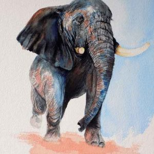 Oga is an original painting of an elephant for sale by local Dorset artist Maryanne Pitman.