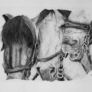 Three Musketeers is an original painting offered for sale by local Dorset artist Maryanne Pitman.