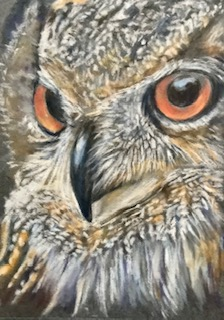 Wise Old Bird original artwork of an owl by Mary Brightwell