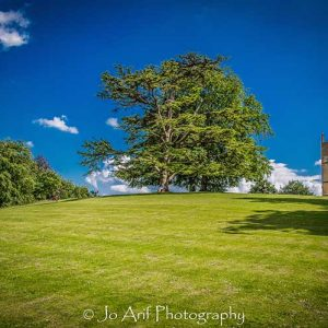 Quiet afternoon is a photographic print by Jo Arif taken in Sherborne Castle /United Kingdom.