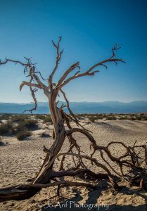 Crying for rain is a photographic print by Jo Arif taken at Death Valley National Park/Nevada/USA.